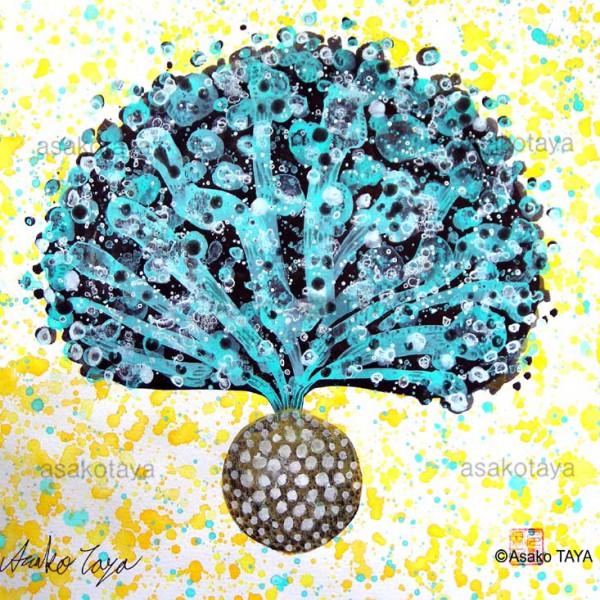 Happy Seed No.7